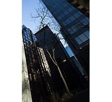 A Study in Contrasts - Downtown Toronto Miniature Park - Left Photographic Print