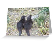 Two Tails Greeting Card