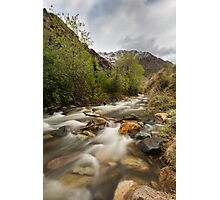 Little Cottonwood River and forest Photographic Print