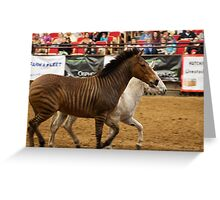 The Equine Touch 3 Greeting Card