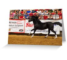 The Equine Touch - Black Beauty Greeting Card
