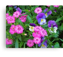 Pink & Purple Flowers Canvas Print