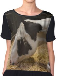 The Equine Touch 2 Chiffon Top