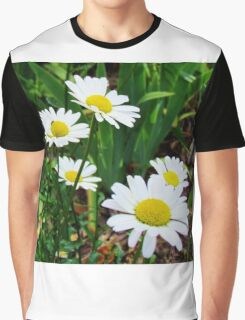 Daisies In Bloom Graphic T-Shirt