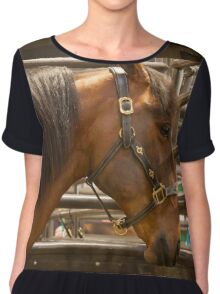 The Equine Touch Chiffon Top