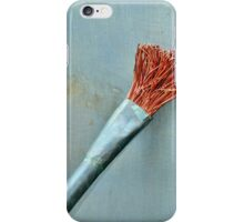 The Paint Brush  iPhone Case/Skin