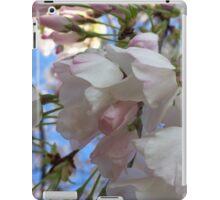 Cherry tree iPad Case/Skin