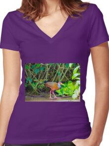 Grey-Necked Wood Rail Women's Fitted V-Neck T-Shirt