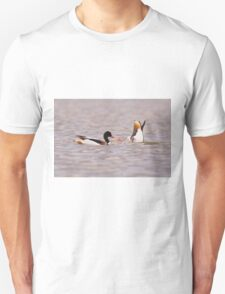 Common shelduck (Tadorna tadorna) swimming.  Unisex T-Shirt