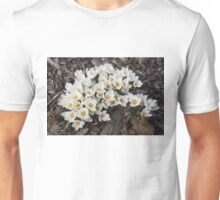 Springtime Abundance - a Bouquet of Pure White Crocuses Unisex T-Shirt
