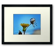 NS Yellow In Blue© Framed Print