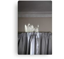 view from the mattress Canvas Print