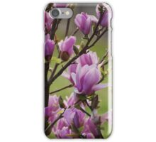 Violet Flowers iPhone Case/Skin