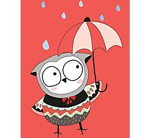 Cartoon Birds Rainy Day Owl Photographic Print