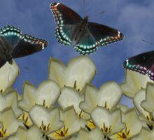 tulips and butterflies Sticker
