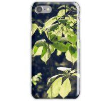 Green Mood 2 iPhone Case/Skin
