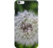 Wish Things iPhone Case/Skin