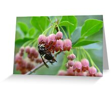 Wasp and Red Bells Greeting Card