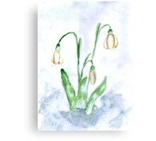 Snowdrop Flowers Painting 3 Canvas Print
