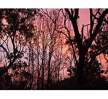 Sunset Silhouette Photographic Print