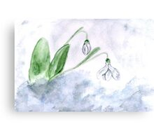 Snowdrop Flowers Painting 4 Canvas Print