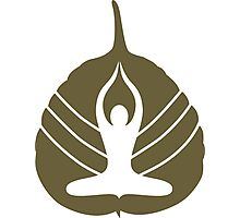 Yoga Logo Photographic Print
