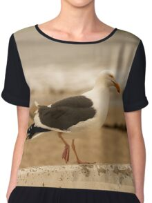 Walking Seagull Chiffon Top