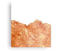 Rose Gold Rush #redbubble #lifestyle Canvas Print