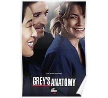 Grey's Anatomy Season 10 Poster Poster