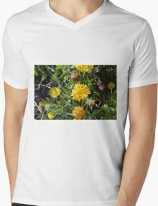 Yellow flowers in the green grass. Mens V-Neck T-Shirt