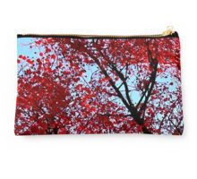 Red tree Studio Pouch