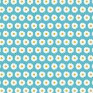 Simple White Daisy on Blue by Lisa Marie Robinson