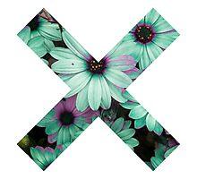 the xx Photographic Print