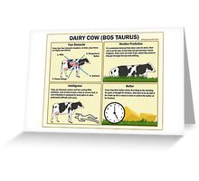 The Dairy Cow Greeting Card