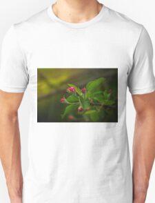 Apple tree bud Unisex T-Shirt