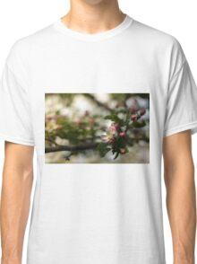 Apple tree flower Classic T-Shirt