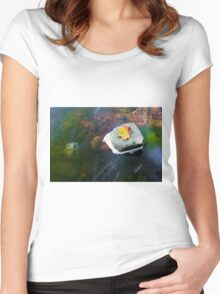 Autumn Leaf in Stream Women's Fitted Scoop T-Shirt