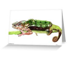 Madagascar Panther Chameleon Greeting Card