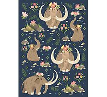 Cute mammoths Photographic Print