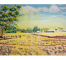 Sun on the stubble at Nunagin Photographic Print