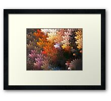 Autumn Fir Framed Print