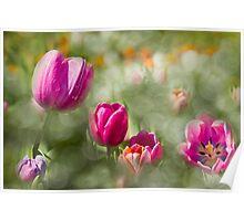 I Choose Spring Poster