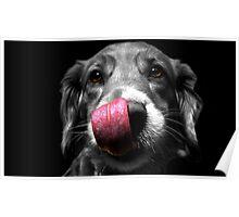 Dog Kiss Poster