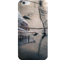 Icicles at the evening light iPhone Case/Skin