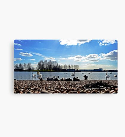 Lakeside Landscape #2 Canvas Print