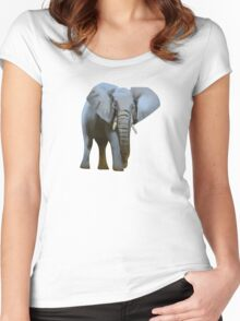Colorful Majestic Elephant  Women's Fitted Scoop T-Shirt