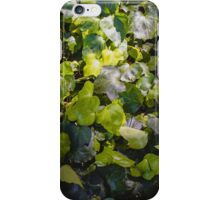 Nature Abstract 5 iPhone Case/Skin