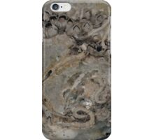 Amazing Shell............ iPhone Case/Skin