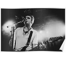 Pete Doherty The Libertines Live Shot Poster