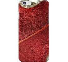 The Changing of the Seasons - Maple Tree Leaf iPhone Case/Skin